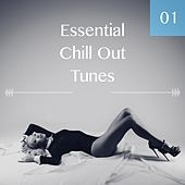 Essential Chill Out Tunes, Vol. 01 by Various Artists