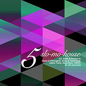 Slo-Mo-House, Vol. 5 by Various Artists