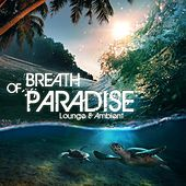 Breath of Paradise – Lounge & Ambient by Various Artists