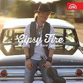 Gipsy Fire by Various Artists