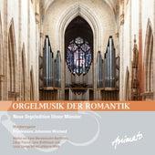 Orgelmusik der Romantik (Promo Version) by Friedemann Johannes Wieland