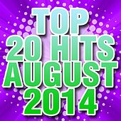 Top 20 Hits August 2014 by Piano Tribute Players