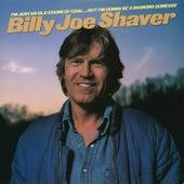 I'm Just an Old Chunk of Coal...But I'm Gonna Be a Diamond Someday by Billy Joe Shaver
