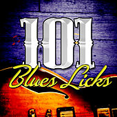 101 Blues Licks von Various Artists