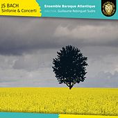 Johann Sebastian Bach - Sinfonie & Concerti by Various Artists