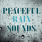 Peaceful Rain Sounds by Nature Sounds