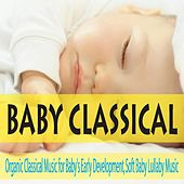 Baby Classical: Organic Classical Music for Baby's Early Development, Soft Baby Lullaby Music by Robbins Island Music Group