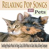 Relaxing Pop Songs for Pets: Soothing Popular Music for Dogs, Cats, & Bird Music to Calm, Relax, & Keep Company by Robbins Island Music Group