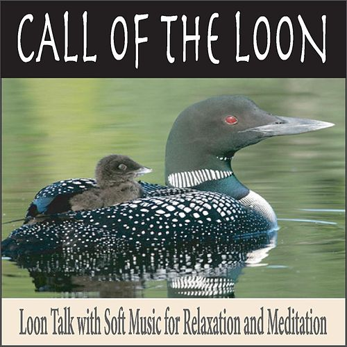 Call Of The Loon: Loon Talk With Soft Music For... By