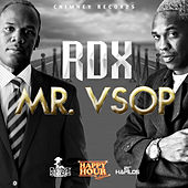 Mr. VSOP - Single by RDX