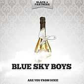 Are You from Dixie von Blue Sky Boys