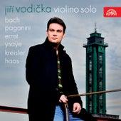 Violino Solo by Jiří Vodička