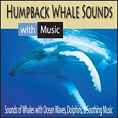 Humpback Whale Sounds With Music: Sounds of Whales With Ocean Waves, Dolphins, & Soothing Music by Robbins Island Music Group