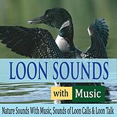 Loon Sounds With Music: Nature Sounds With Music, Sounds of Loon Calls & Loon Talk by Robbins Island Music Group