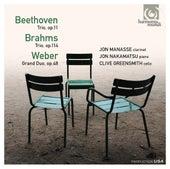 Beethoven, Brahms, Weber: Trios & Duo by Various Artists