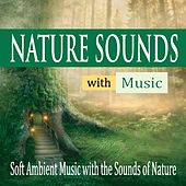 Nature Sounds With Music: Soft Ambient Music With the Sounds of Nature by Robbins Island Music Group