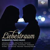 Liebestraum: Romantic Piano Music by Misha Goldstein