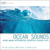 Ocean Sounds: Ocean Waves With Whales, Dolphins, & Ocean Rain, Nature Sounds for Deep Sleep, Meditation, & Relaxation by Robbins Island Music Group