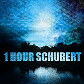 1 Hour Schubert by Various Artists
