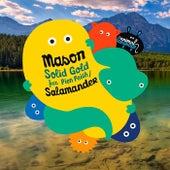 Soild Gold / Salamander by Mason