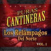 Puras Cantineras, Vol. 1 by Los Relampagos Del Norte