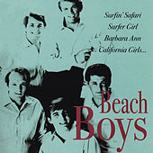Beach Boys by The Beach Boys