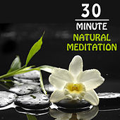 30 Minute Natural Meditation: Peaceful Music for Yoga, Meditation & Relaxation by Meditation