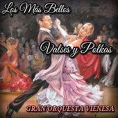 Los Más Bellos Valses y Polkas by Gran Orquesta Vienesa