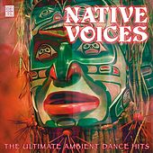 Native Voices Part 2 Vol 3 by Various Artists