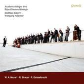 Mozart, Strauss & Geisselbrecht by Various Artists