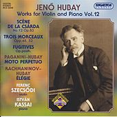 Hubay: Works for Violin and Piano, Vol. 12 by Ferenc Szecsodi