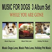 Music for Dogs 3 Album Set While You Are Gone: Music Dogs Love / Music Pets Love / Holiday Pet Music by Robbins Island Music Group