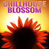 Chillhouse Blossom by Various Artists