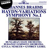 Brahms: Haydn Variations - Symphony No. 1 by Various Artists