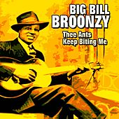 Thee Ants Keep Biting Me (39 of His Best Hits and Songs) by Big Bill Broonzy