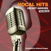Vocal Hits Velvet Grooves Volume On! by Various Artists
