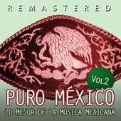 Puro México, Vol. 2 by Various Artists