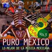 Puro México, Vol. 3 by Various Artists