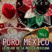 Puro México, Vol. 1 by Various Artists