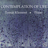 Contemplation of Life by Tomáš Klement