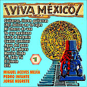 Viva Mexico! Vol.1 by Various Artists