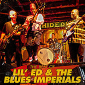 The Best Of Lil' Ed & The Blues Imperials by Lil' Ed Williams