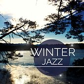 Winter Jazz, Vol. 1 (Warm and Relaxed Jazz & Lounge Tunes for Cold Winter Days) by Various Artists
