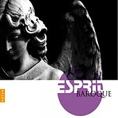 Esprit Baroque von Various Artists