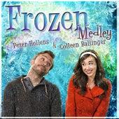 Frozen Medley by Peter Hollens