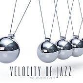 Velocity of Jazz, Vol. 11 by Various Artists