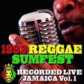 1993 Reggae Sumfest, Vol.1 (Recorded Live, Jamaica) von Various Artists