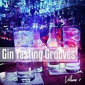 Gin Tasting Grooves, Vol. 1 (Best Bar Tunes for Cocktail and Longdrink Tasting) by Various Artists
