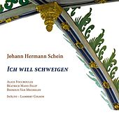 Schein: Ich will schweigen by Various Artists