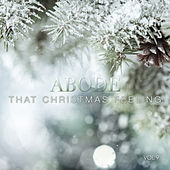 Abode: That Christmas Feeling, Vol. 9 by Various Artists